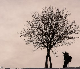 A nature photographer